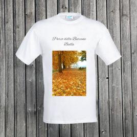 Biella – Parco della Burcina 03