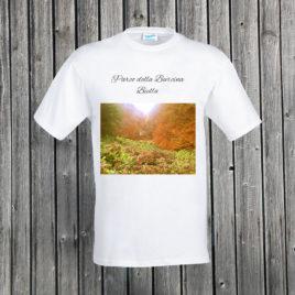 Biella – Parco della Burcina 04